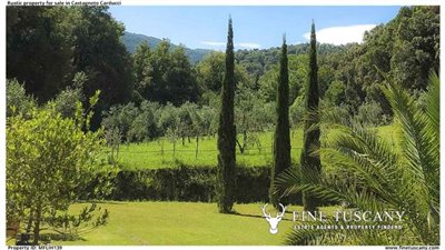 Rustic-property-for-sale-in-Castagneto-Carducci--Livorno--Tuscany-4