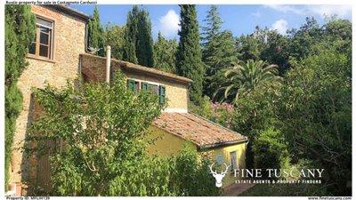 Rustic-property-for-sale-in-Castagneto-Carducci--Livorno--Tuscany-7