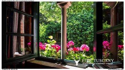 Rustic-property-for-sale-in-Castagneto-Carducci--Livorno--Tuscany-13