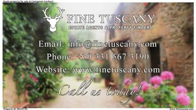 Rustic-property-for-sale-in-Castagneto-Carducci--Livorno--Tuscany--Contact-us
