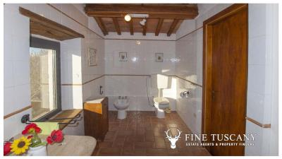 Country-house-for-sale-in-Canneto--Monteverdi-Marittimo--Tuscany-22