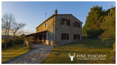 Stone-house-for-sale-in-Monteverdi-Marittimo--Maremma--Tuscany--Italy-2