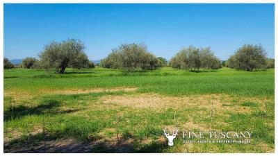 Villa-for-sale-in-Roccastrada-Grosseto-Tuscany-2