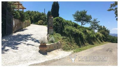Rural-Country-House-for-sale-in-Sorano-Grosseto-Maremma-Tuscany-Italy-19