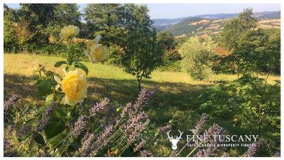 Rural-Country-House-for-sale-in-Sorano-Grosseto-Maremma-Tuscany-Italy-21