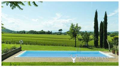 Property-with-pool-and-land-for-sale-in-Monteroni-d-Arbia--Chianti--Siena--Tuscany--Italy-6