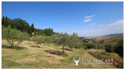 Fully-detached-stone-house-for-sale-in-Volterra-Pisa-Tuscany-Italy-8