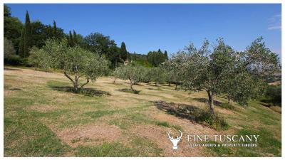 Fully-detached-stone-house-for-sale-in-Volterra-Pisa-Tuscany-Italy-26
