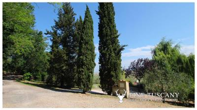 Fully-detached-stone-house-for-sale-in-Volterra-Pisa-Tuscany-Italy-33