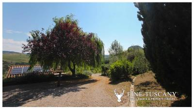 Fully-detached-stone-house-for-sale-in-Volterra-Pisa-Tuscany-Italy-34