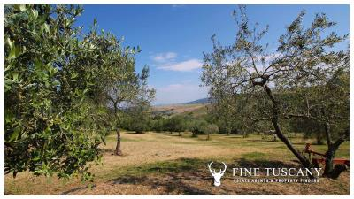 Fully-detached-stone-house-for-sale-in-Volterra-Pisa-Tuscany-Italy-36