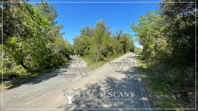 Stone-Farmhouse-with-land-for-sale-between-Siena-and-Grosseto-Tuscany-Italy-1