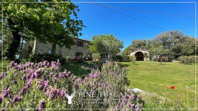 Stone-Farmhouse-with-land-for-sale-between-Siena-and-Grosseto-Tuscany-Italy-5