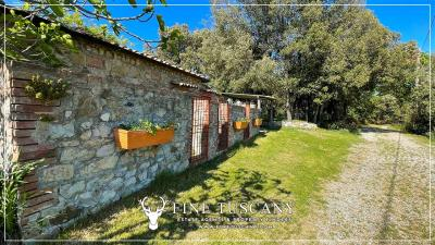 Stone-Farmhouse-with-land-for-sale-between-Siena-and-Grosseto-Tuscany-Italy-20