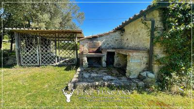 Stone-Farmhouse-with-land-for-sale-between-Siena-and-Grosseto-Tuscany-Italy-27