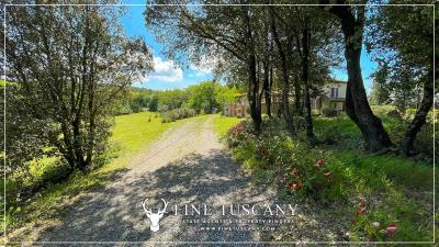 Stone-Farmhouse-with-land-for-sale-between-Siena-and-Grosseto-Tuscany-Italy-22