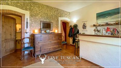 Stone-Farmhouse-with-land-for-sale-between-Siena-and-Grosseto-Tuscany-Italy-45