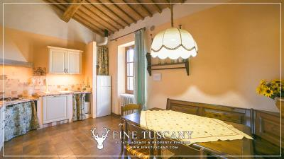 Stone-Farmhouse-with-land-for-sale-between-Siena-and-Grosseto-Tuscany-Italy-88
