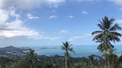 The-Lux-Samui-By-Neo-Concept-Design-View