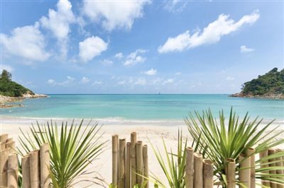 Villa-Playa-Ko-Samui-View
