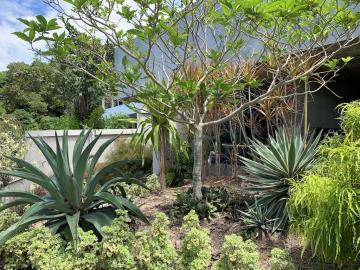 South-Coast-Sea-View-Property-Garden