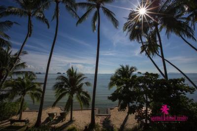 Five-Islands-Beachfront-Villa-Ko-Samui-Palms