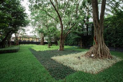 Ashton-Asoke-Condo-Communal-Gardens