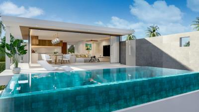 Paragon-Villas-Samui-Pool