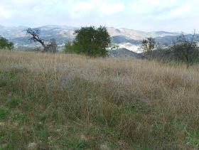 Image No.6-Cortijo for sale