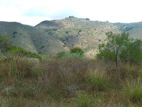 Image No.11-Cortijo for sale