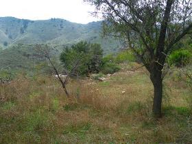 Image No.12-Cortijo for sale