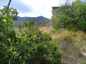 Image No.18-Cortijo for sale