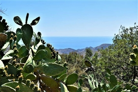 Image No.8-3 Bed Cortijo for sale