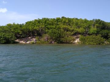Vernon-Island--1-