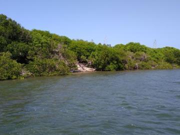 Vernon-Island--2-