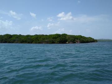 Vernon-Island--4-