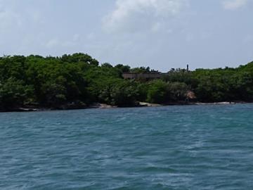 Vernon-Island--5-