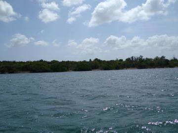 Vernon-Island--8-