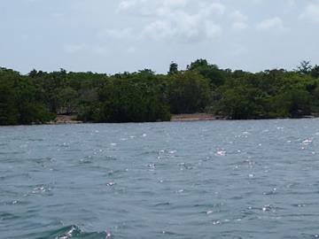 Vernon-Island--9-