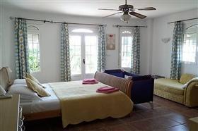 Image No.4-7 Bed Villa for sale