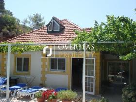 Nicosia, Chalet