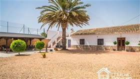 Image No.4-3 Bed Finca for sale