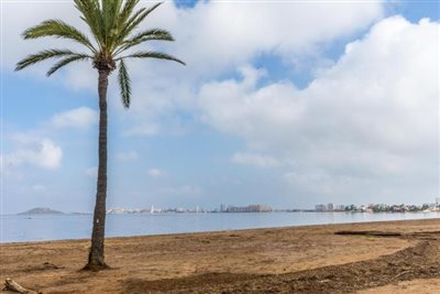 Los-Flamencos-Playa-Honda-19