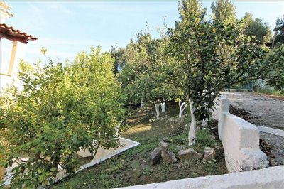 Photo 11 - Hotel 175 m² in Ionian islands