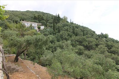 Photo 14 - Hotel 329 m² in Ionian islands