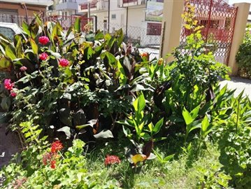 9-Garden front