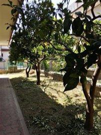 10-Garden front-1