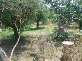 Image No.7-Bungalow de 2 chambres à vendre à Messinia