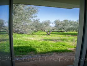Image No.12-Maison de 2 chambres à vendre à Messinia