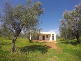 Image No.17-Maison de 2 chambres à vendre à Messinia